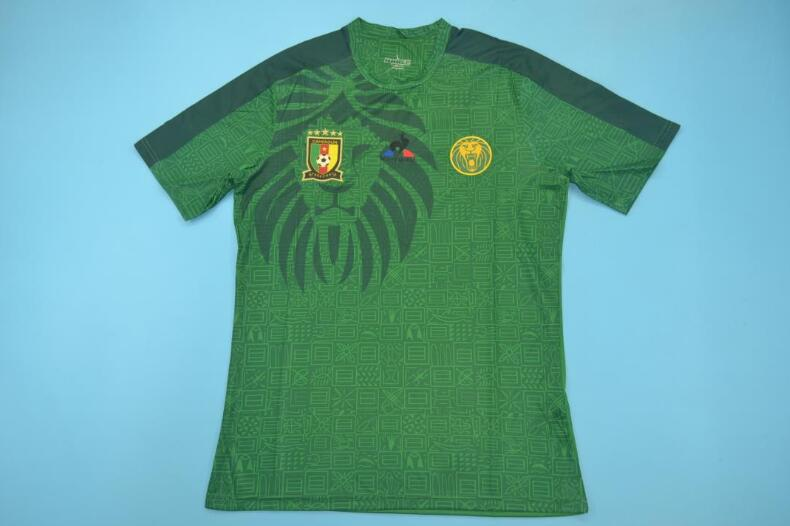 AAA(Thailand) Cameroon 2019 Green Soccer Jersey 02